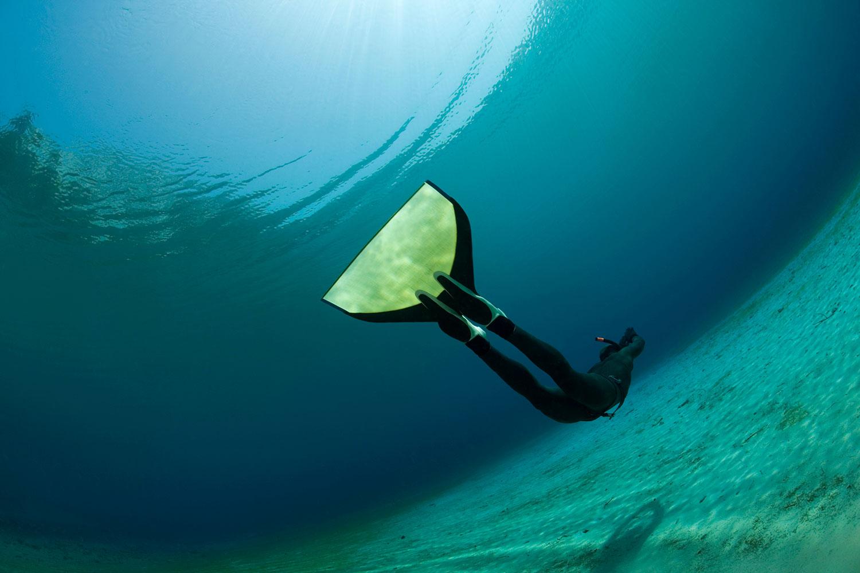 Free diving - Life Butler International